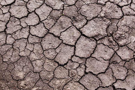 soil texture: dry sandy earth of crack background