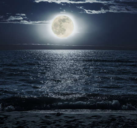 Moonlit Night over the Sea on a sandy beach