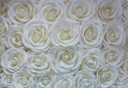 白色背景上的白色纸花