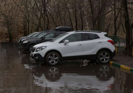 Cars in a parking lot in the rain in the spring under the trees