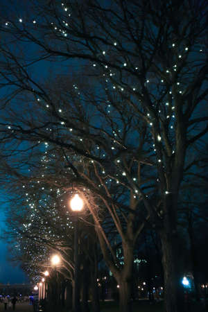 Glowing garlands on trees on a night street in the city. Festive decoration. Standard-Bild