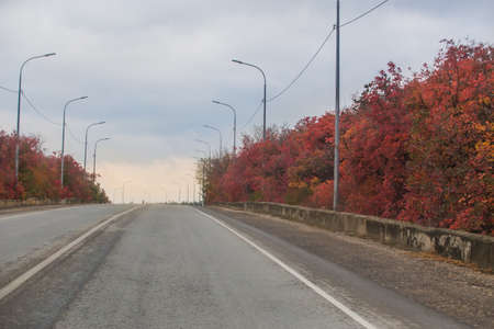 Autumn Highway with bright red leaves on trees along the roadside