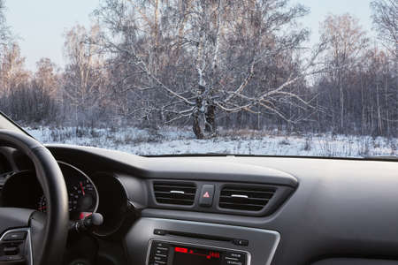 View through the windshield of a car on a winter snow-covered birch forest