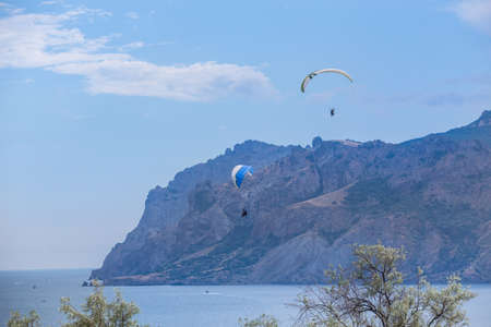 Paraschutists on paragliders fly in the sky above the sea