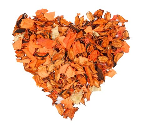 Orange heart from dry colors, tree on a white background, to the day of Sainted Valentine photo