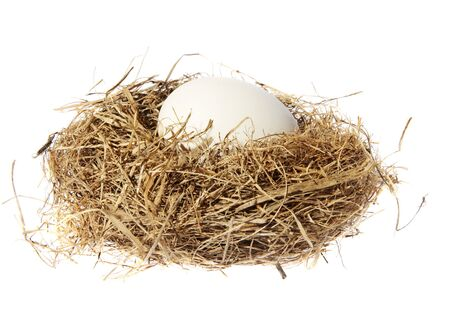 Birds nest with eggs on a white background. (isolated) Stock Photo - 5176728