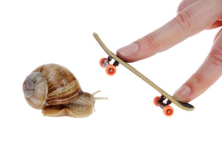 slithery: Snail and skateboard for your fingers on the white background
