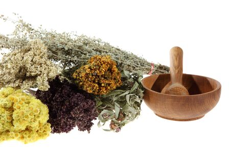 Medicinal herbs on the white background photo