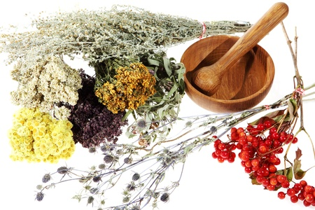 Medicinal herbs on the white background. Stock Photo - 10418147