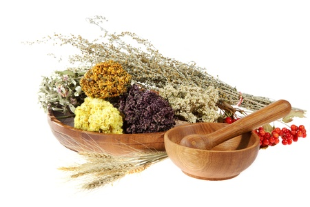 Medicinal herbs on the white background.