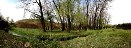 streamlet: Small streamlet with trees in the spring, Panorama Stock Photo
