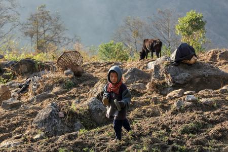 sherpa: HIMALAYAS, NEPAL, MARCH 20: Barefoot Nepali boy in the garden. Everest region, Himalayas, in Nepal on March 23, 2014