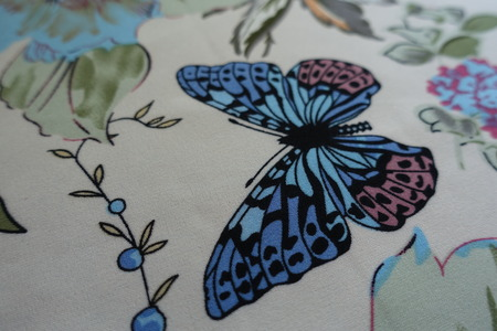 Close up of fabric with butterfly print