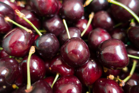 Macro of dark red fruits of sweet cherry