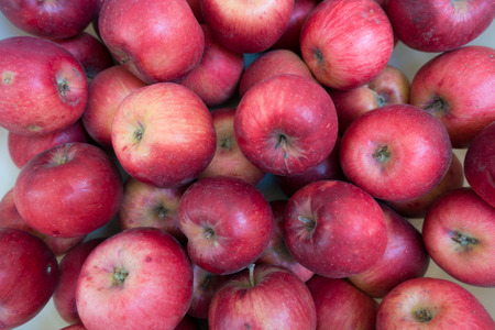 Ripe red apples (Jonathan cultivar) from above