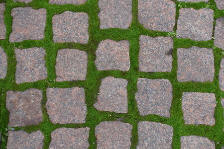 Greyish pink granite pavement with green moss in joints from above