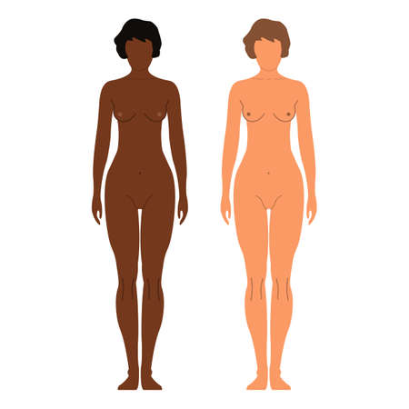 African and European Women. Human front side Silhouette. Isolated on White Background. Vector illustration.