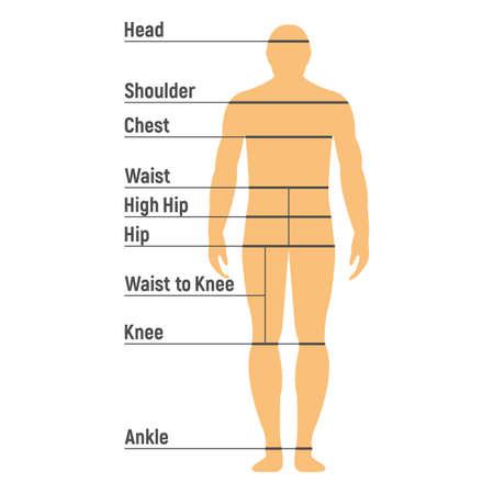 Größentabelle für Männer. Menschliche Vorderseite Silhouette. Isoliert auf weißem Hintergrund. Vektor-Illustration. Vektorgrafik