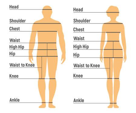 Tabella taglie donna e ragazza. Lato anteriore umano Silhouette. Isolato su sfondo bianco. Illustrazione vettoriale.