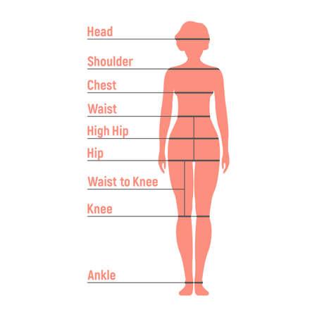 Tabla de tallas de mujer. Silueta del lado frontal humano. Aislado sobre fondo blanco. Ilustración vectorial.
