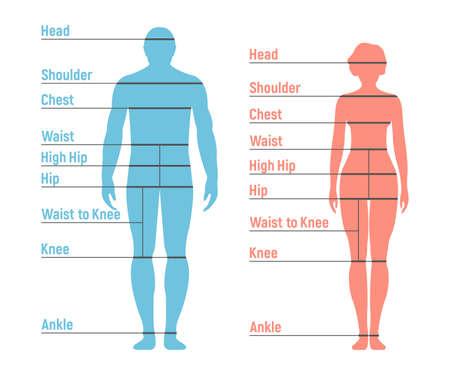 Tabla de tallas de mujer y niña. Silueta del lado frontal humano. Aislado sobre fondo blanco. Ilustración de vector.