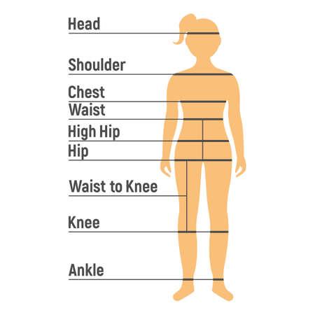 Tabella delle taglie della ragazza. Lato anteriore umano Silhouette. Isolato su sfondo bianco. Illustrazione vettoriale.