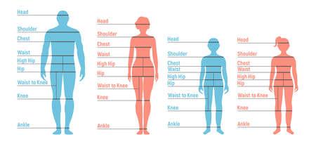 Tabla de tallas de hombre, mujer, niño y niña. Silueta del lado frontal humano. Aislado sobre fondo blanco. Ilustración vectorial. Ilustración de vector