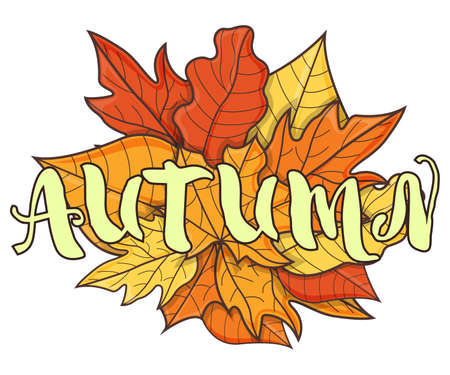 Autumn Text on Leaf Concept Icon. Leaf Fall Background. Autumn Symbol, Icon and Badge. Cartoon Vector illustration.