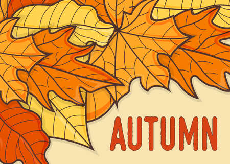 Fall and Autumn Banner Concept. Leaf Fall Background. Autumn Symbol, Icon and Badge. Cartoon Vector illustration.