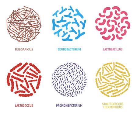 Ensemble d'icône de probiotiques. Concept et étiquette. Symbole, icône et insigne de recherche en santé. Illustration de vecteur de dessin animé.