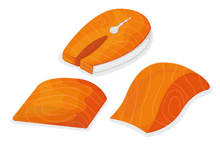 Set of piece fish tuna salmon, fresh minnow steak tenderloin isolated on white, cartoon illustration. Healthy fat seafood stuff icon, mega 3 food. Humpback chunk for grill, asian meal concept. Vettoriali