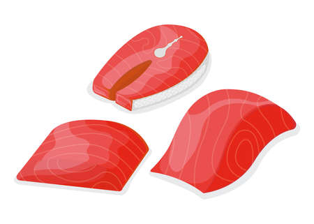 Set of piece fish tuna salmon, fresh minnow steak tenderloin isolated on white, cartoon illustration. Healthy fat seafood stuff icon, mega 3 food. Humpback chunk for grill, asian meal concept. 向量圖像