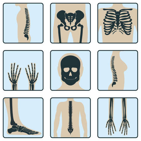 Set of bone, chest x-ray concept icon, roentgen human body image isolated on white, flat  illustration. Skeleton part of man organism, silhouette black biological science.