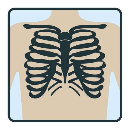 Thoracic cage bone, chest x-ray concept icon, roentgen human body image isolated on white, flat vector illustration. Skeleton part of man organism, silhouette black biological science. Vettoriali