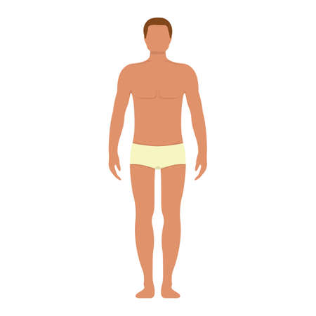 Male anatomy human character, man people dummy front and view side body silhouette, isolated on white, flat illustration. Black and cartoon person mannequin people scale concept. Vettoriali