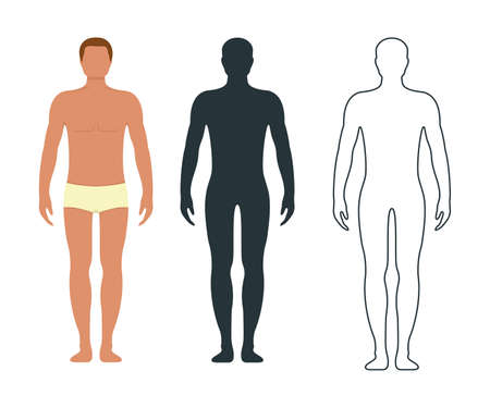 Male and female anatomy human character, people dummy front and view side body silhouette, isolated on white, flat illustration. Black, outline and cartoon mannequin people scale concept. Vettoriali