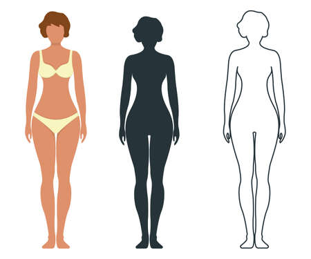 Female anatomy human character, people dummy front and view side body silhouette, isolated on white, flat illustration. Black, outline and cartoon mannequin people scale concept.