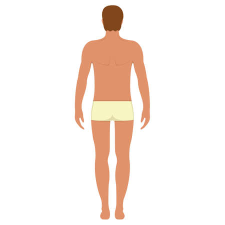 Male anatomy human character, man people dummy front and view side body silhouette, isolated on white, flat vector illustration. Black and cartoon person mannequin people scale concept.