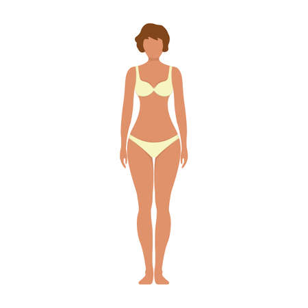 Female anatomy human character, woman people dummy front and view side body silhouette, isolated on white, flat illustration. Black and cartoon man mannequin people scale concept.
