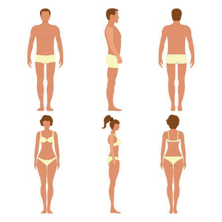 Male and female anatomy human character, people dummy front and view side body silhouette, isolated on white, flat illustration. Black and cartoon mannequin people scale concept.