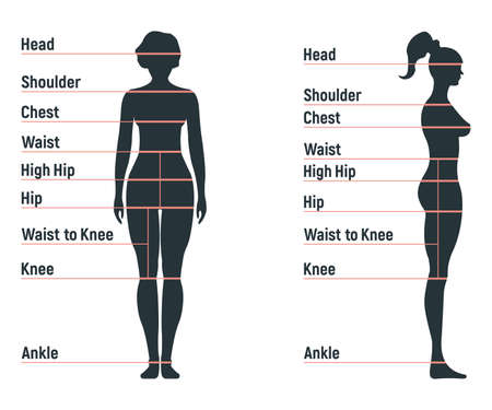 Female size chart anatomy human character, people dummy front and view side body silhouette, isolated on white, flat vector illustration. Cartoon woman mannequin people dimension scale. Standard-Bild - 152735275