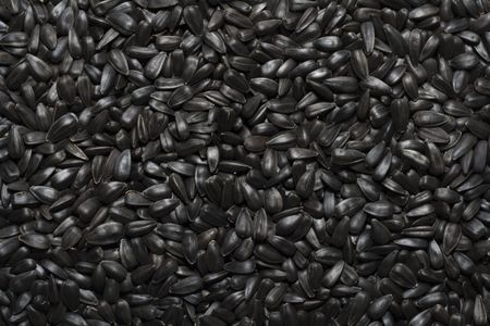 Black sunflower seeds. For texture or background photo