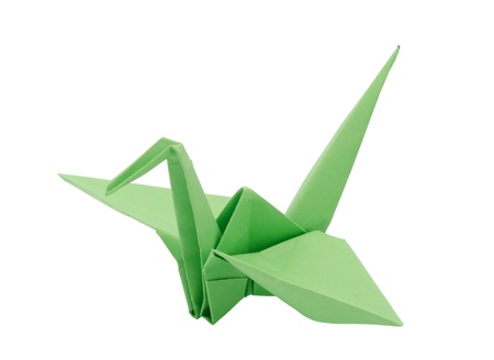 crane fly: Light Green origami paper crane  Isolated on white