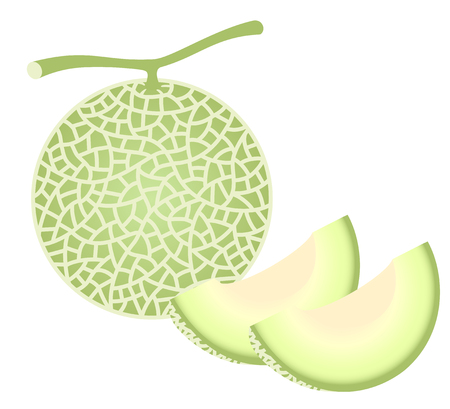 fresh melon Ilustrace