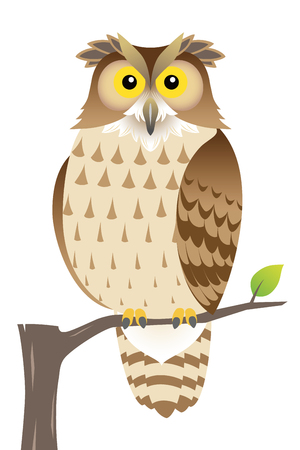 OWL, isolated on white background Stock Illustratie