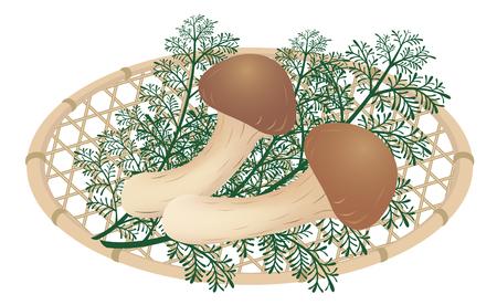 Matsutake mushrooms on the bamboo basket