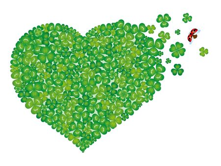 heart-shaped green clover leaves, isolated on white background