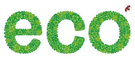 Eco word made from green clover leaves, isolated on white background
