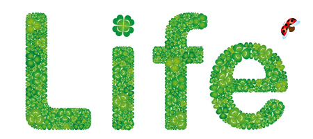 Life word made from green clover leaves, isolated on white background Illustration