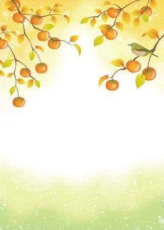 柿の木に熟した果実  イラスト・ベクター素材